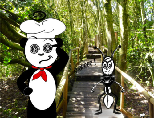 THE PANDA ANT???