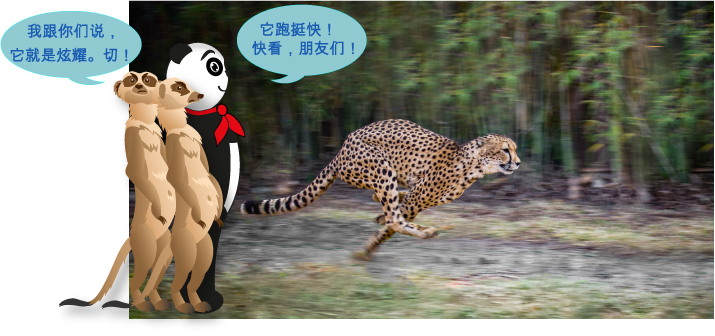 动物王国中,谁是跑步冠军?